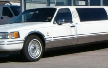 Lincoln Limousin
